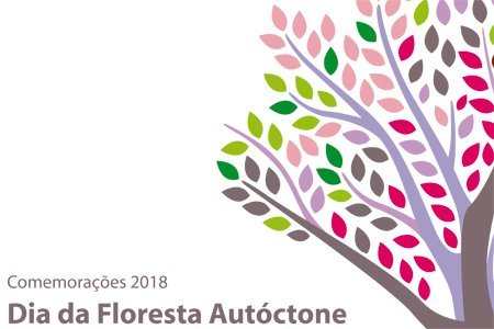 Dia floresta autoctone noticia 1 450 300